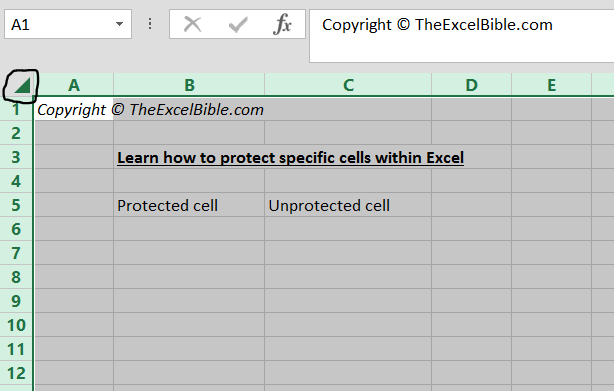 Protect Specific Cells within an Excel Worksheet